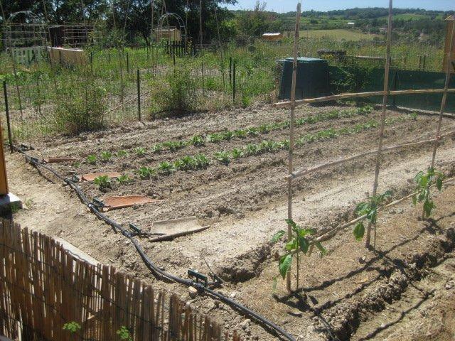 jardinenzo042.jpg